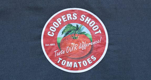 Coopers Shoot Tomatoes
